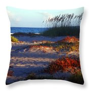 Evening Light At The Beach Throw Pillow