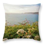 Evening Light In Cornwall Throw Pillow