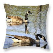 Evening Light On Nature Throw Pillow