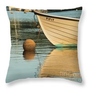 Evening Light On Pipit Throw Pillow