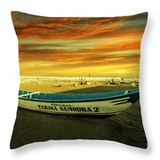 Evening On The Beach Throw Pillow