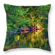 Evening On The Humber River - Paint Throw Pillow