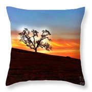 Evening Peace  Throw Pillow