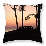 Evening Picnic Throw Pillow