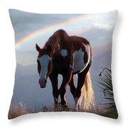 Evening Promise Throw Pillow
