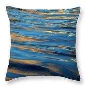 Evening Silk Throw Pillow