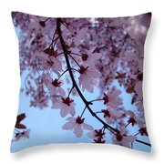 Evening Sky Pink Blossoms Art Prints Canvas Spring Baslee Troutman Throw Pillow