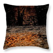 Evening Sun On Small River Throw Pillow