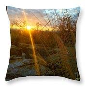 Evening Sun Rays In The Desert Throw Pillow