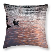 Evening Swim Throw Pillow