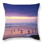Evening Tide Reflections Throw Pillow
