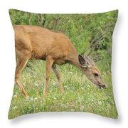 Evening Visitor Throw Pillow