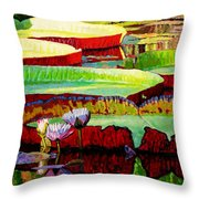 Ever Changing Colors Throw Pillow