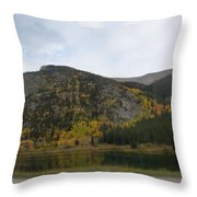 Ever Day Should  Be A Holiday For A Drive Throw Pillow