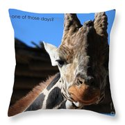 Ever Have One Of Those Days Throw Pillow
