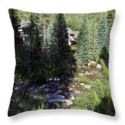 Ever Vail Throw Pillow