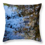 Evergaldes Master Throw Pillow