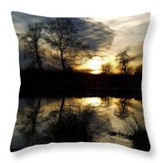 Everglade View Throw Pillow