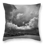 Everglades 0257bw Throw Pillow