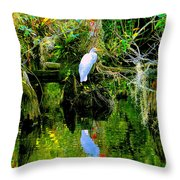 Everglades Egret Throw Pillow