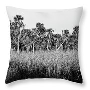 Everglades Grasses And Palm Trees 2 Throw Pillow