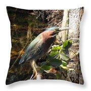 Everglades Inhabitant Throw Pillow