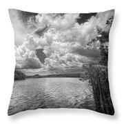 Everglades Lake - 0278abw Throw Pillow