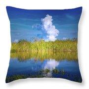 Everglades Smoke Throw Pillow