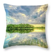 Everglades Sunset Throw Pillow