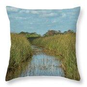 Everglades Trail Throw Pillow