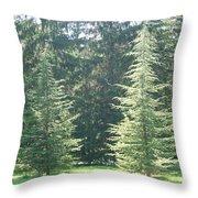 Evergreen Dance Throw Pillow