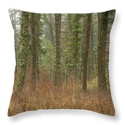 Evergreen Fog Throw Pillow