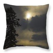 Everlasting Spring 2 Throw Pillow
