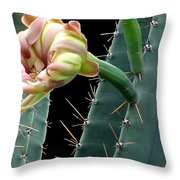 Every Cactus Flower Has It's Thorns  Throw Pillow