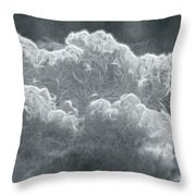 Every Lining Has A Silver Cloud Throw Pillow