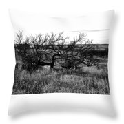 Every Which Way But Loose Throw Pillow