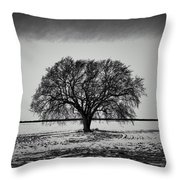 Everybody Has One Throw Pillow