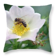 Everybody's Darling Throw Pillow