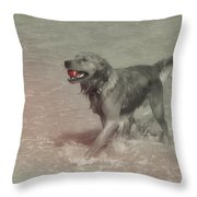 Everyones Best Friend Throw Pillow