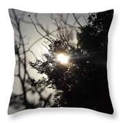 Everything Was A Blur Throw Pillow