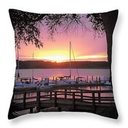 Everything's In Place Throw Pillow