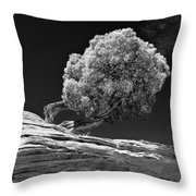 Evidence Of Weather Throw Pillow