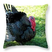 Evil Eye From Foul Turkey Throw Pillow