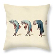 Evolution Of Fish Into Old Man, C. 1870 Throw Pillow