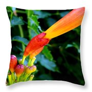 Evolution Of The Trumpet Flower I Throw Pillow