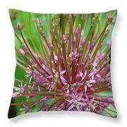 Evolving Allium Throw Pillow