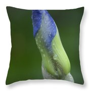 Evolving Throw Pillow