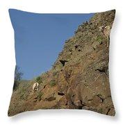 Ewe 6 Throw Pillow