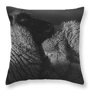 Ewe Talk A Throw Pillow