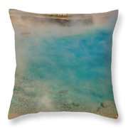 Excelsior Pool Throw Pillow